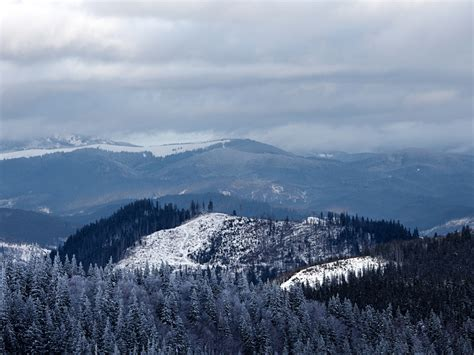 Celebrate Winter Magic In The Great Smoky Mountains In A Charming Rustic Cabin In Gatlinburg Tennessee Fashiontribes Travel by 5 Tips For A Family Vacation In A Two Bedroom Pigeon Forge