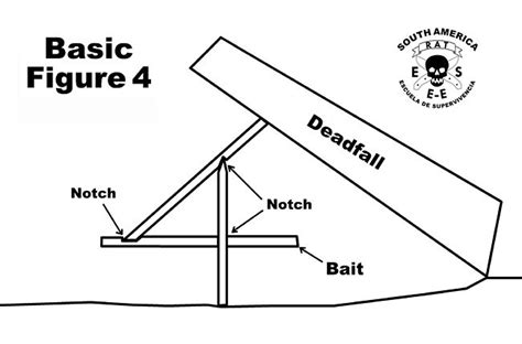 figure 4 trap diagram 17 best images about animal traps on mouse