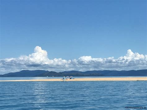 camira catamaran airlie beach airlie beach whitsunday islands katamaran schnorcheltour