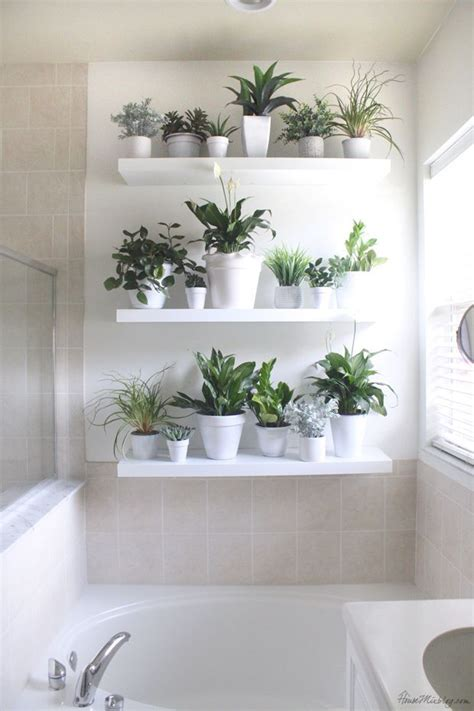 Wall Plant Shelf by 25 Best Ideas About Outdoor Wall Decorations On