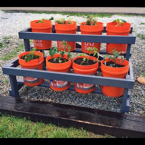 Bucket Gardening 5 Gallon Vegetable Garden