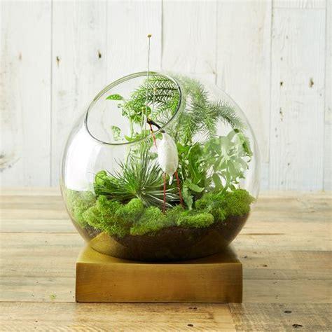 adorable spring terrariums  home decor digsdigs
