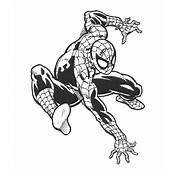 Spiderman Da Colorare  123 – Disegni
