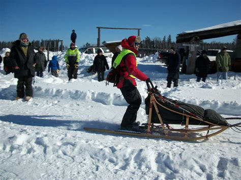 sled race white oak sled race white oak society