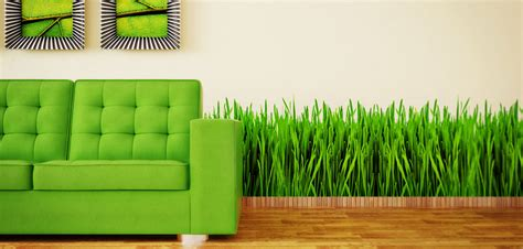 Greenliving by Brandpointcontent Green Living