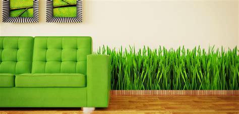green living brandpointcontent green living