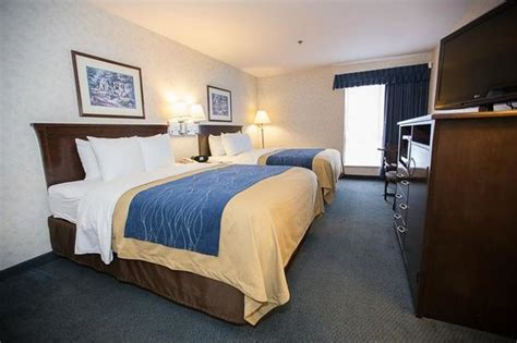 comfort inn bellingham comfort inn bellingham updated 2017 prices hotel