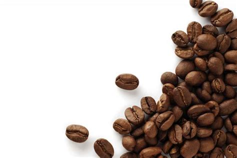 Coffee Bean Indonesia indonesia growth opportunity and market expansion
