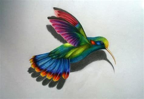 dibujos realistas en color colibr 237 ilustra