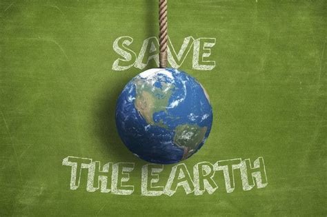 15 Simple Ways To Live A More Eco Friendly Life