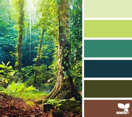 rainforest colors color wander design seeds color combos and favorite color