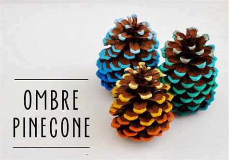 where to buy pine cones for crafts most creative and adorable pine cone crafts noted list