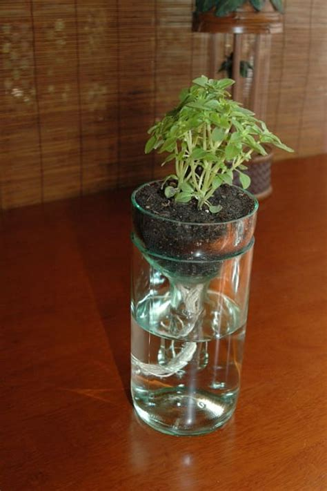 ultimate diy project self watering planter from used