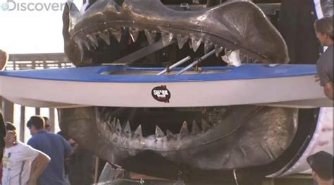 megalodon overestimated shark week megaladon shark replica biting through a boat