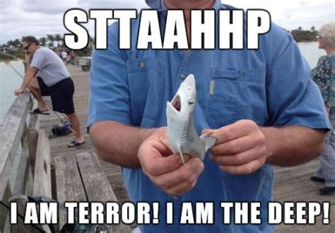 Sad Shark Meme - i am terror i am the deep pictures photos and images