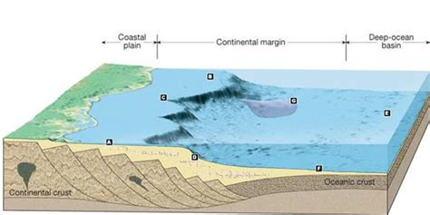 Pacific Continental Shelf by Gly 1001 Oceanography Name