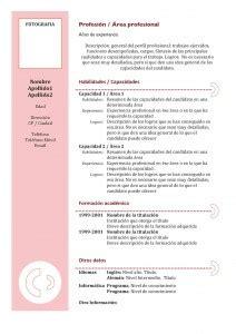 Modelo Curriculum Funcional Curriculum Vitae Funcional