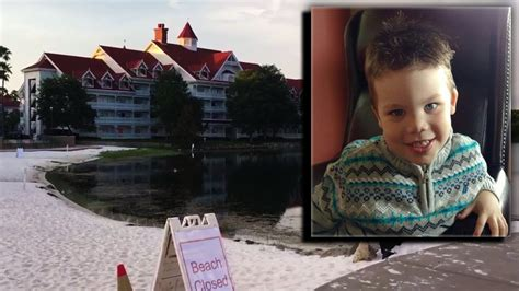 father of toddler killed at disney resort says two alligators were dad says 2 gators involved in disney attack that killed