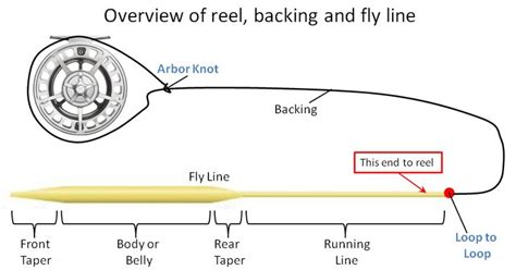 1000 images about fly fishing lines leaders and tippets