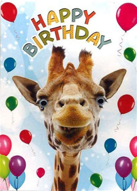 new year animal birthday giraffe balloons birthday card 3d goggly moving