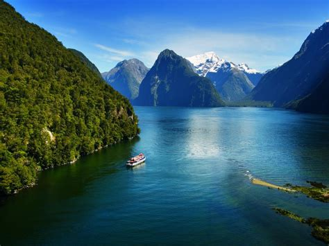 fjord queenstown milford sound new zealand traces of the sea in the green
