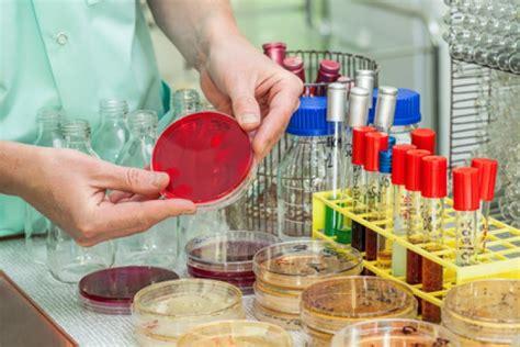 microbiologia alimenti microbiologia di alimenti e mangimi per animali