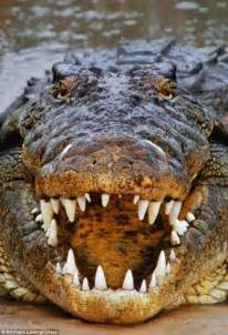 NT hunter escapes crocodile attack by poking his eye ...