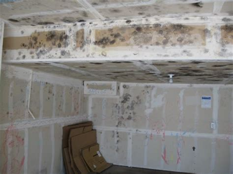 Garage Bathroom Ideas by Mold In The Garage Health Risks Removal