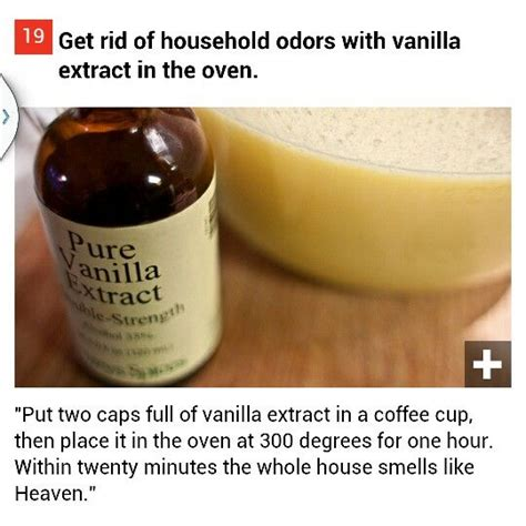 how to make your house smell good 74 best cleaning images on pinterest
