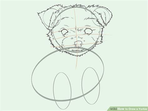 how to draw a yorkie easy easy steps how to draw a yorkie how to draw a terrier how to