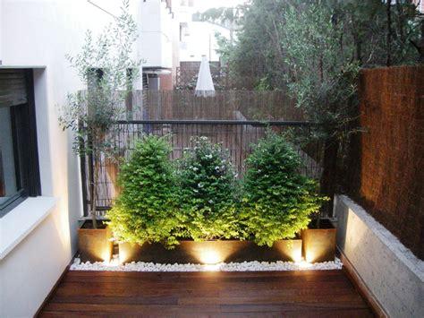 jardines en terrazas jard 237 n en una terraza o azotea guia de jardin