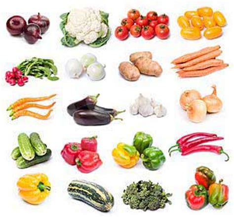 d vegetables name different types different types of vegetables