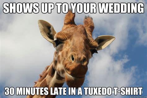 Meme Giraffe - dgaf giraffe memes quickmeme