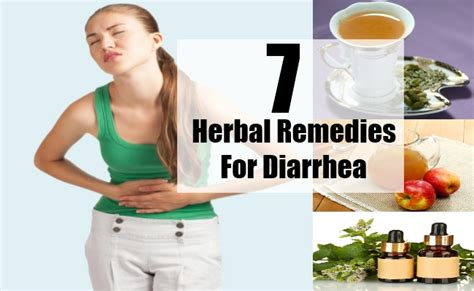 top 7 herbal remedies for diarrhea best herbs for