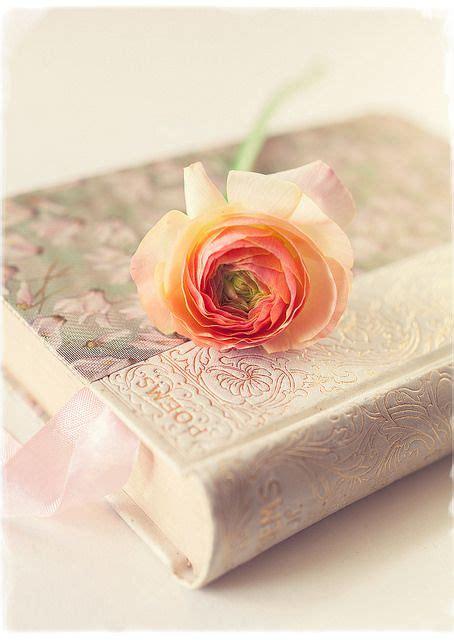 libro old roses poems and roses revistas libros la sabiduria y rosas