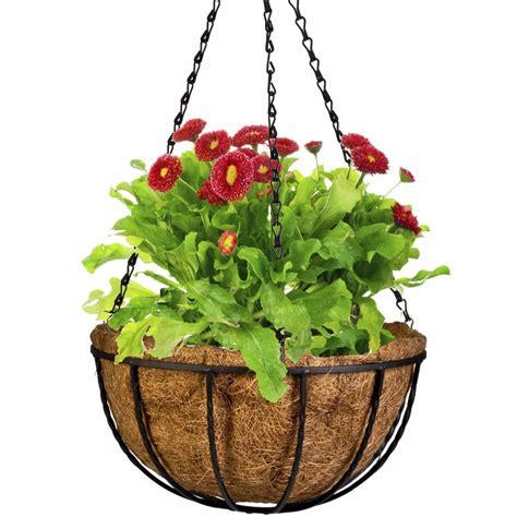 wrought coconut   flowerpot hanging pots window