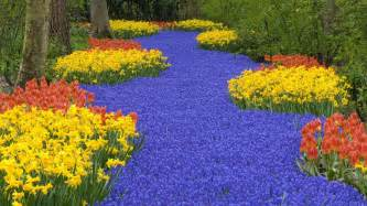 Flowers Garden Pictures Amazing Flower Garden Wallpaper