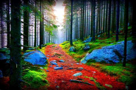 pathway wallpapers most beautiful places in the world