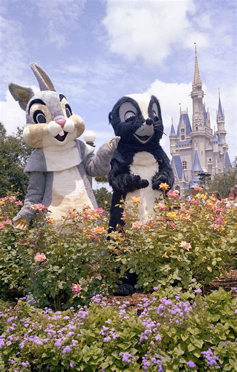 Disney April Showers by Disney Days Of Past April Showers Bring May Flowers At
