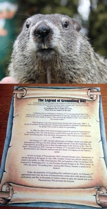 groundhog day pa groundhog day pennsylvania and early on