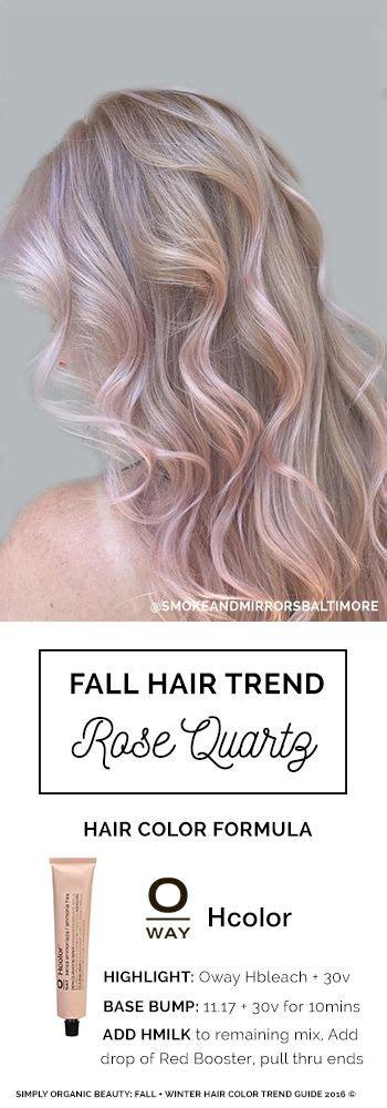 best formula for trendy graycolor 88 best images about hair color formulas on pinterest