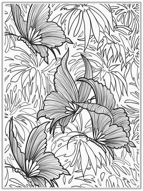 coloring books for adults images butterfly coloring pages for adults printable coloring