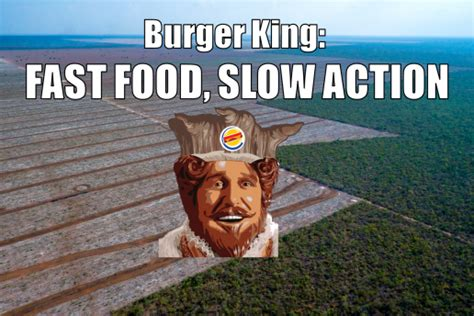 Burger King Meme - burger king commits to stop destroying rainforests in 13