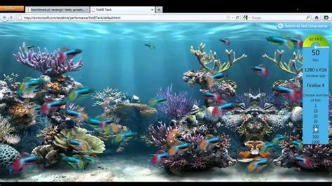 fish tank bench fish ie tank benchmark youtube