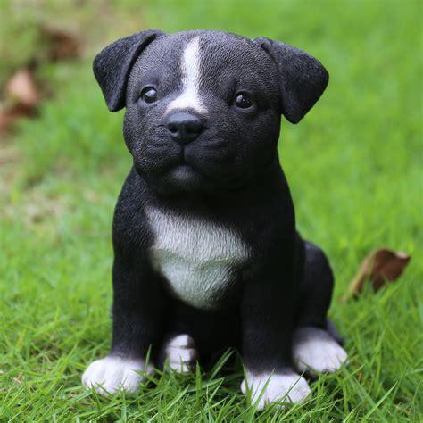 Hi Line Gift Ltd. Sitting Staffordshire Pitbull Puppy