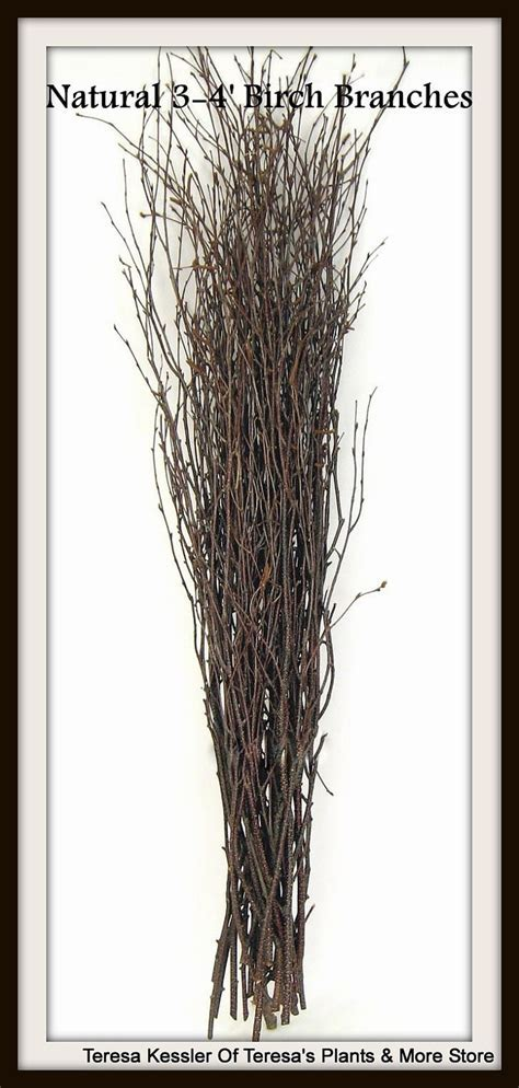 25 Natural Birch tree branches Wedding table decor Birch