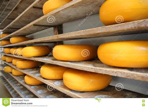 Cheese Edam Whole Whole Edam Cheese Royalty Free Stock Photography