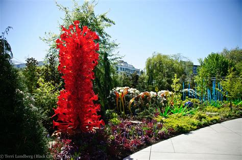 Chihuly Glass Garden by Photo Tour Chihuly Garden And Glass