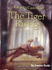 the rising a novel books the tiger rising the book i couldn t stand really the
