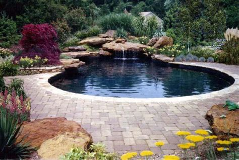 pool waterfall ideas swimming pool designs with waterfalls home decorating ideas